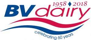BV_logo_-centenary-FINAL_1-18