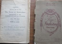 Sales of Shaftesbury