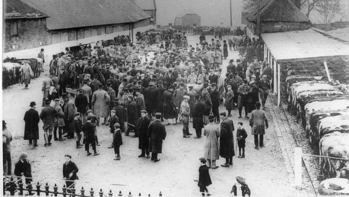 SHAFTESBURY CATTLE MARKET