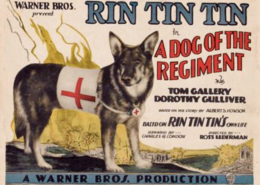Rin Tin Tin in A Dog of the Regiment 1927
